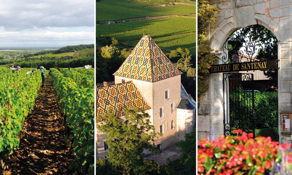 chateau_santenay_brochure_01